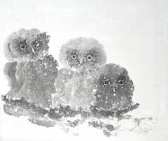 Sumie owlets under snow by bsshka
