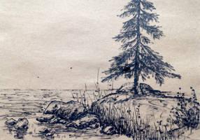 Seashore sketch by bsshka