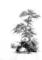 Studying shan shui pine-tree by bsshka