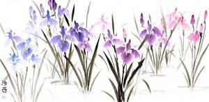 [Sumie] Irises by bsshka