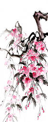 [Sumie] Sakura by bsshka