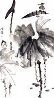 [Sei] Kingfisher on lotus by bsshka