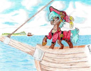 Captain Acunar by Brickule