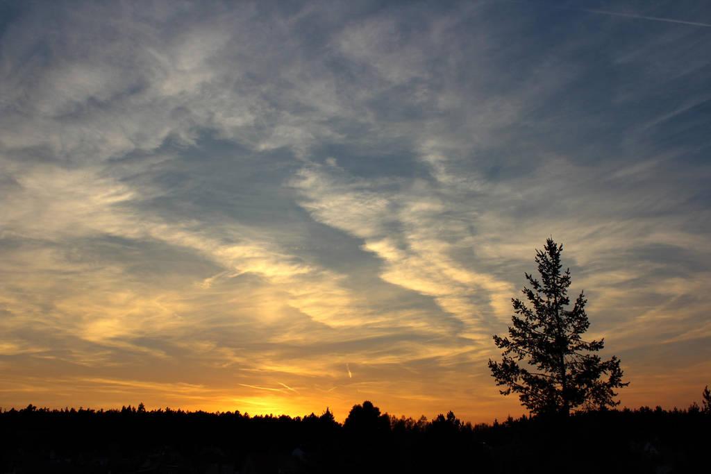 Spring Sunset by Hrasulee