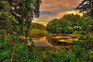 The Old Pond 2 by chevyhax