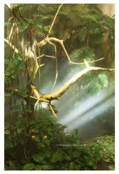 Jungle by Vamaena