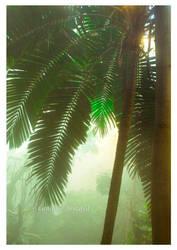 Jungle 2 by Vamaena