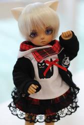 Alec Mini in Black Cat Set by shinzei