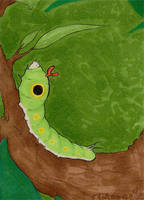 010 - Caterpie by clorinspats