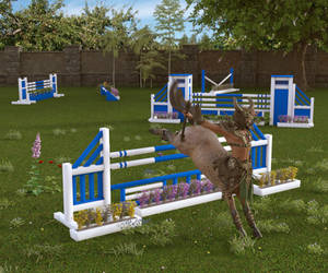 Obstacle Course by Luddox