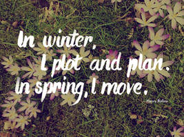 In winter, I plot and plan. In spring, I move. by pica-ae