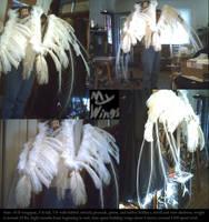 Letifer's wings by MadGeneticist