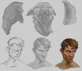 head studies by RocCenere