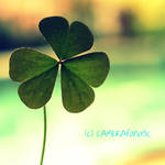Take a shot at luck by CAMERAfanatic