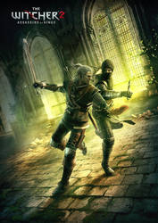 The Witcher 2 - Duel by he1z