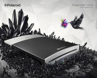 Polaroid - Grey Label by he1z