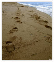 Footprints In The Sand by madilar
