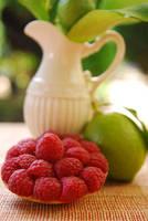 Raspberry tart by lotusleaf
