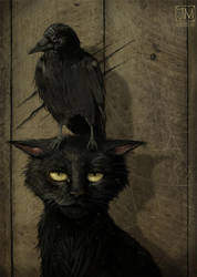 The Raven and the Cat by jerry8448