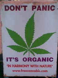 Cannabis by TeeBeeJealousy