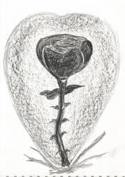 burnt Rose heart by RainbowSelfHelpCafe
