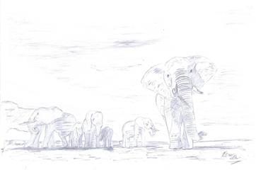 Elephants for Aunt by RainbowSelfHelpCafe