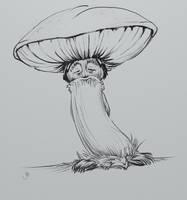 Curious old Mushroom man by Maxiator