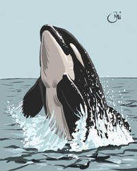 Orca - Inktober 12 by Maxiator