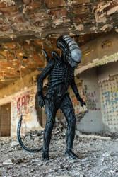 xenomorph cosplay hd 3 by BiXoLoCoO616