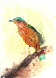 Bird I by Medhi