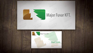 Major Fuvar Corporate design by SkinnyDesigns