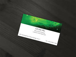 Business Card design for Czilike Pal by SkinnyDesigns