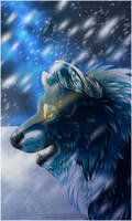 AT: .: Frosted Soul :. by SillyTheWolf