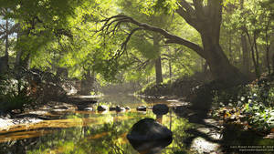 Forest Creek 2016 by neanderdigital