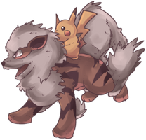 Windie | Arcanine and Pikachu Commission by AutobotTesla