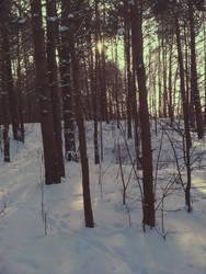 Winter by HebanART