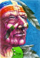 Apache Pass by HamidM