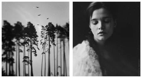 Gray by NataliaDrepina