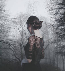 Dusty trees of my dreams by NataliaDrepina