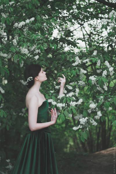 Spring by NataliaDrepina