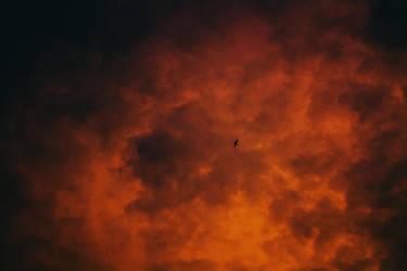 Charred Heaven by NataliaDrepina
