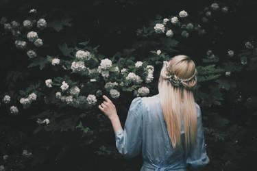The dark garden by NataliaDrepina
