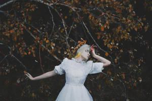 Withering kingdom by NataliaDrepina