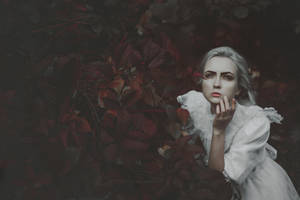 She watched the darkness falls by NataliaDrepina