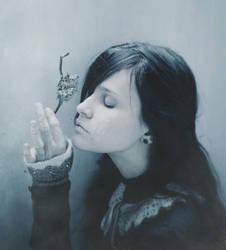 Frozen soul by NataliaDrepina