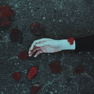 Fallen leaves like scarlet wounds by NataliaDrepina