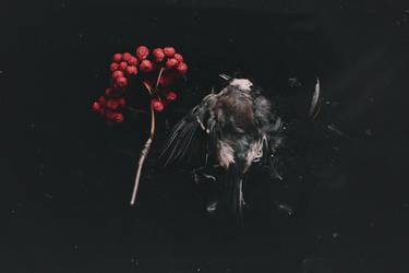 Time to die by NataliaDrepina