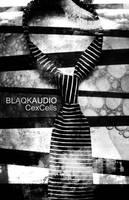 Blaqk Audio Poster by pablorenauld