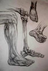 Leg/foot study by zzSnowWhiteQueenzz