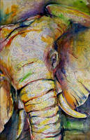 Elephant by luhnoronha
